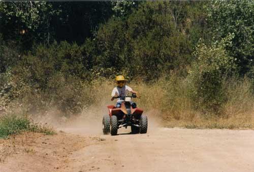 1984 Suzuki Quadsport 230