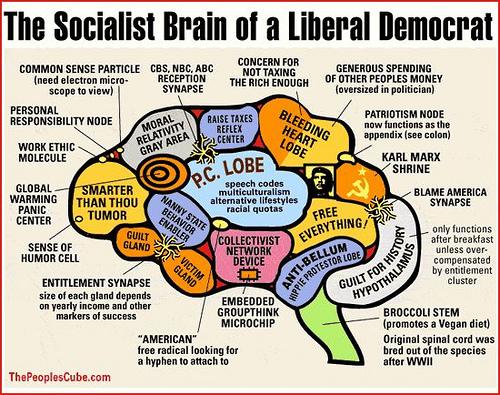 socialist-brain-liberal-democrat